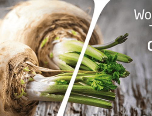 This year's Biofach is coming!
